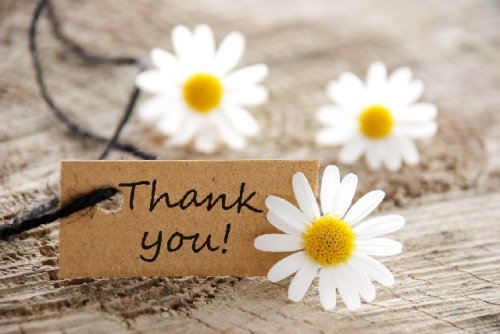 thank-you-flowers.jpg